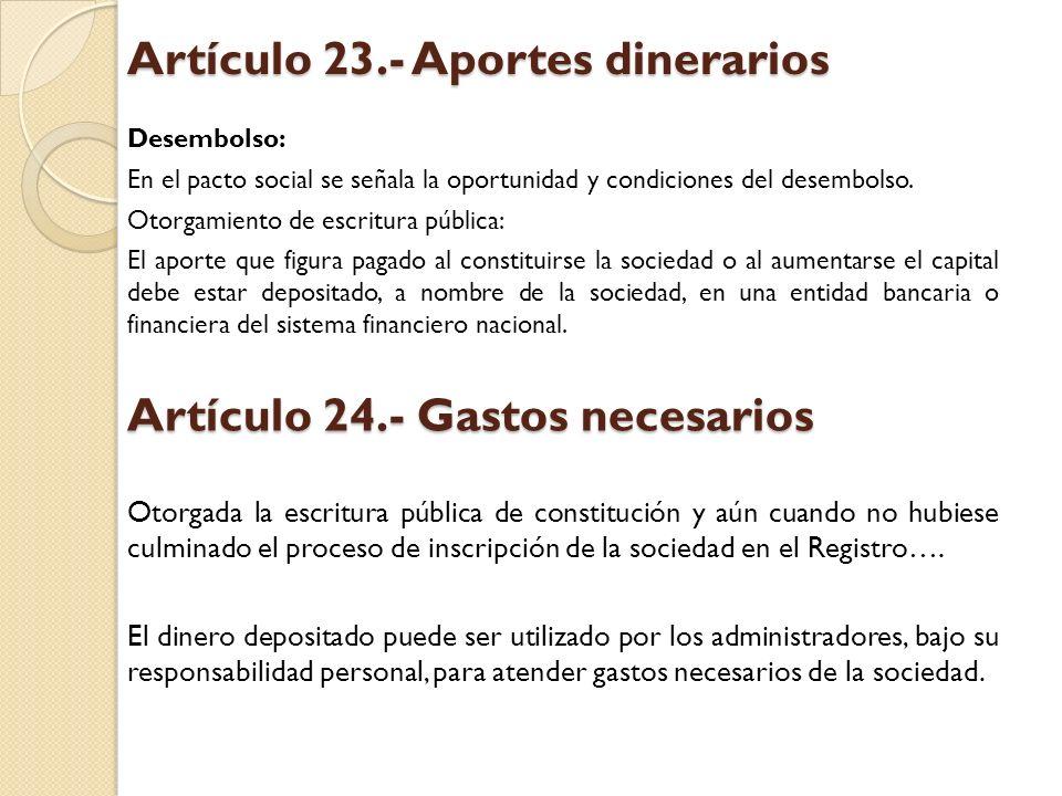Artículo 23.- Aportes dinerarios