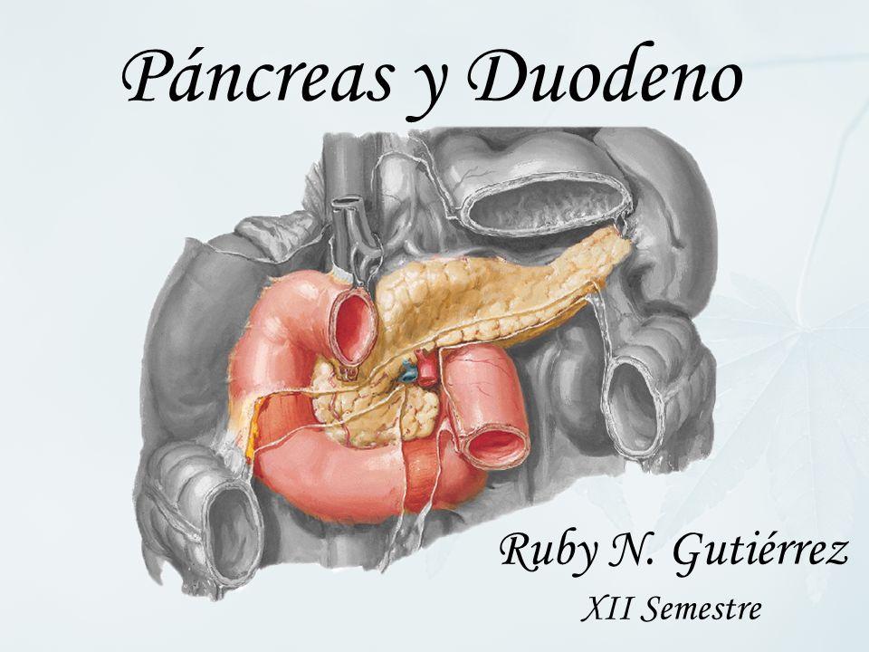 Ruby N. Gutiérrez XII Semestre