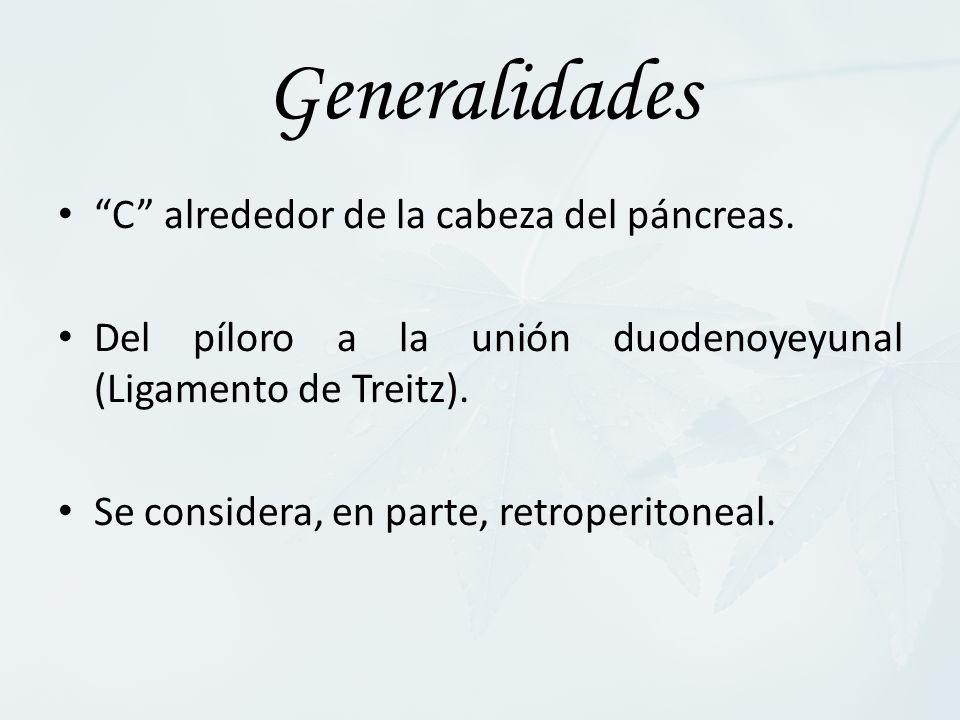 Generalidades C alrededor de la cabeza del páncreas.