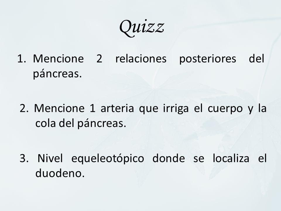 Quizz Mencione 2 relaciones posteriores del páncreas.