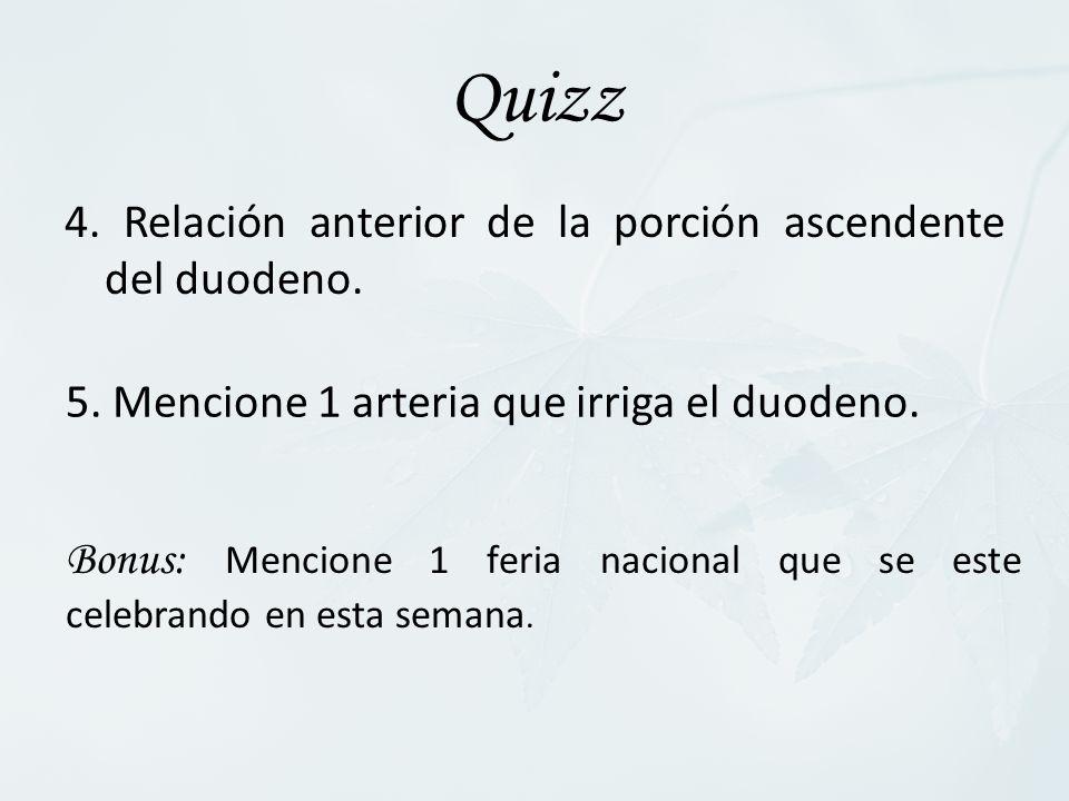 Quizz 4. Relación anterior de la porción ascendente del duodeno.
