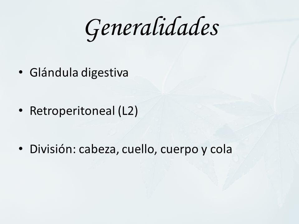 Generalidades Glándula digestiva Retroperitoneal (L2)