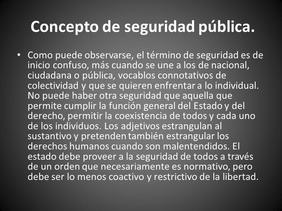 Concepto de seguridad pública.
