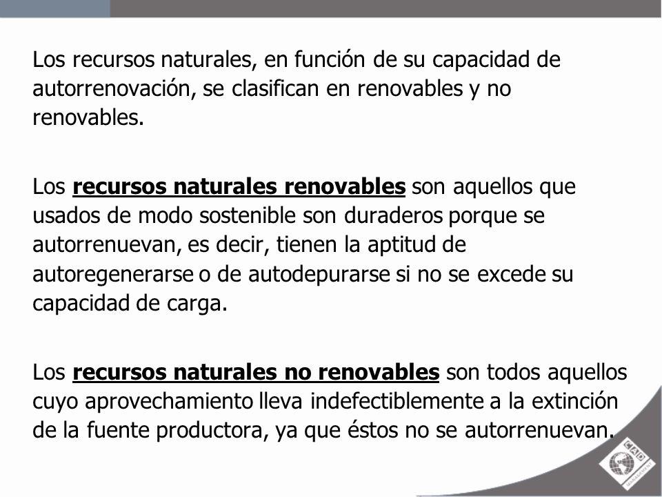 Los recursos naturales, en función de su capacidad de autorrenovación, se clasifican en renovables y no renovables.