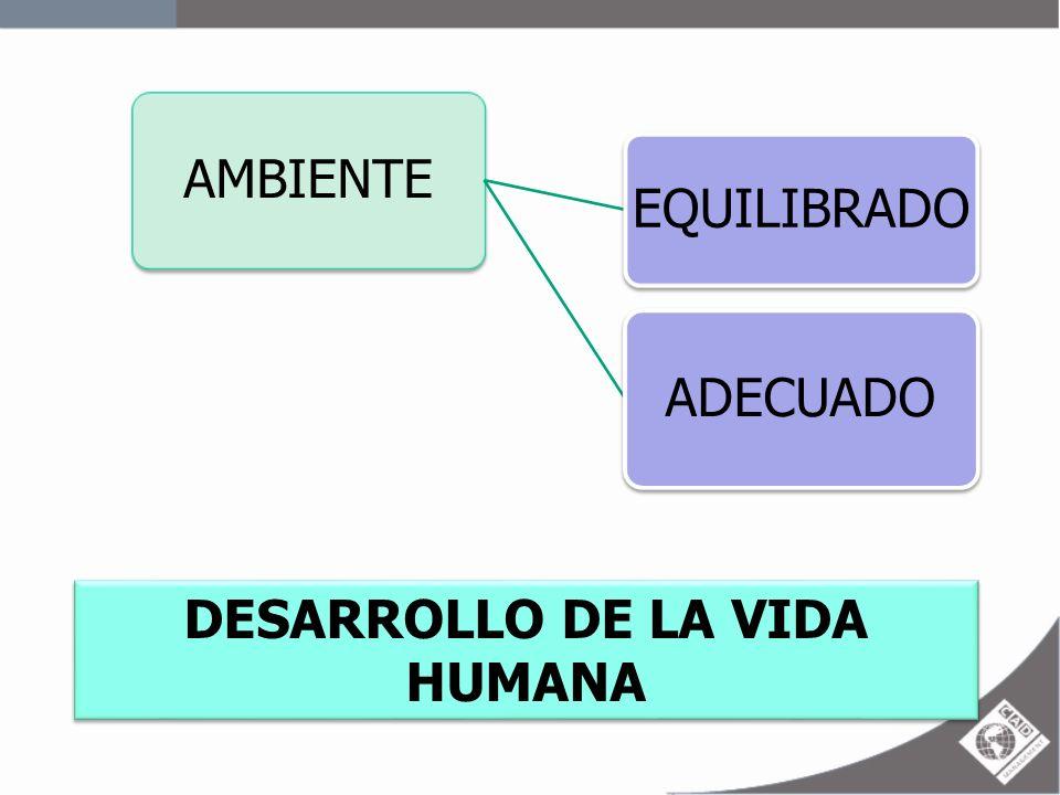 DESARROLLO DE LA VIDA HUMANA