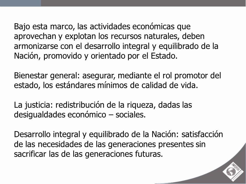 Bajo esta marco, las actividades económicas que aprovechan y explotan los recursos naturales, deben armonizarse con el desarrollo integral y equilibrado de la Nación, promovido y orientado por el Estado.