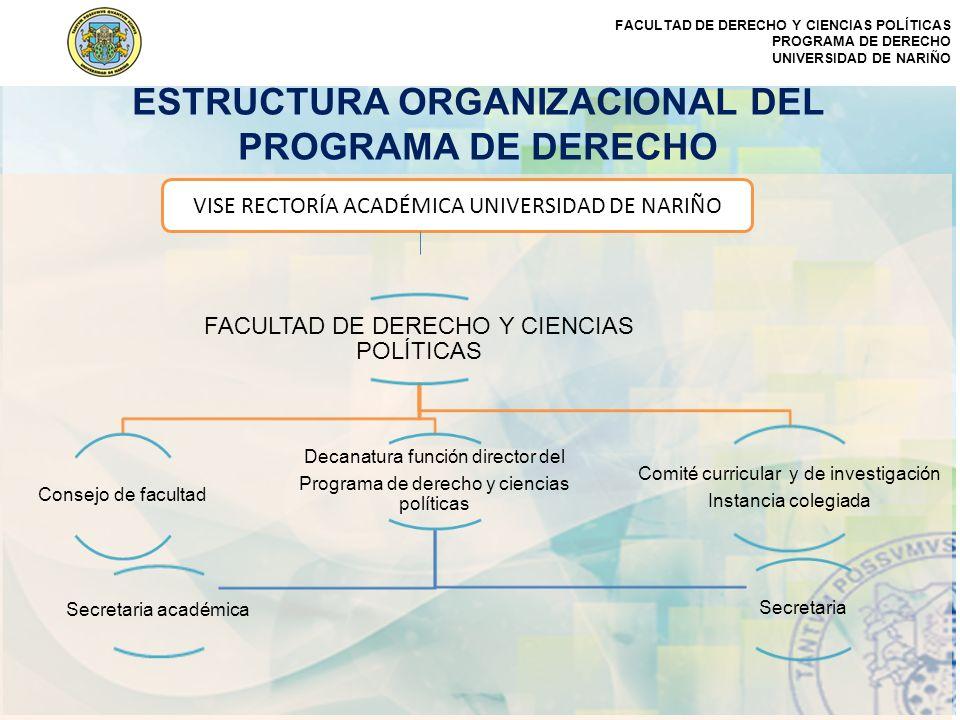 ESTRUCTURA ORGANIZACIONAL DEL PROGRAMA DE DERECHO