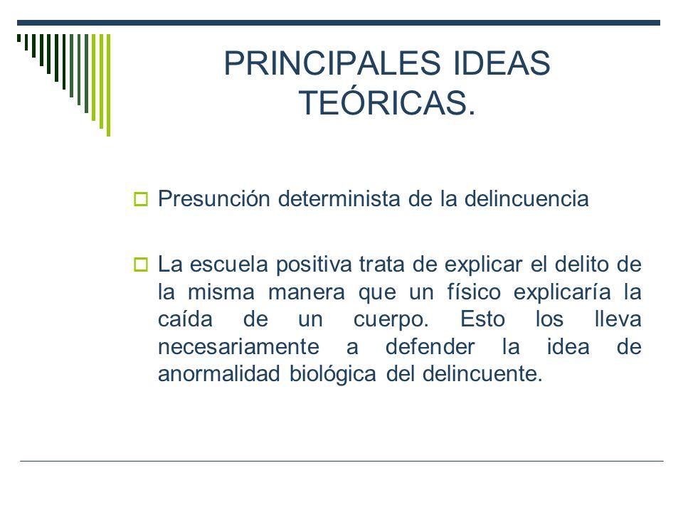 PRINCIPALES IDEAS TEÓRICAS.