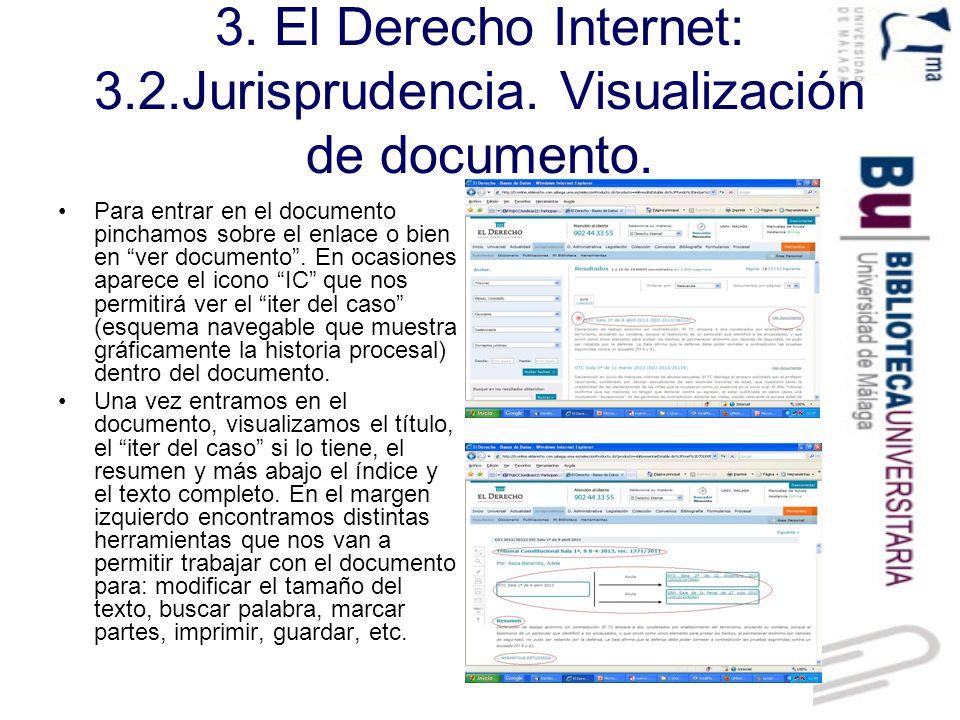 3. El Derecho Internet: 3. 2. Jurisprudencia