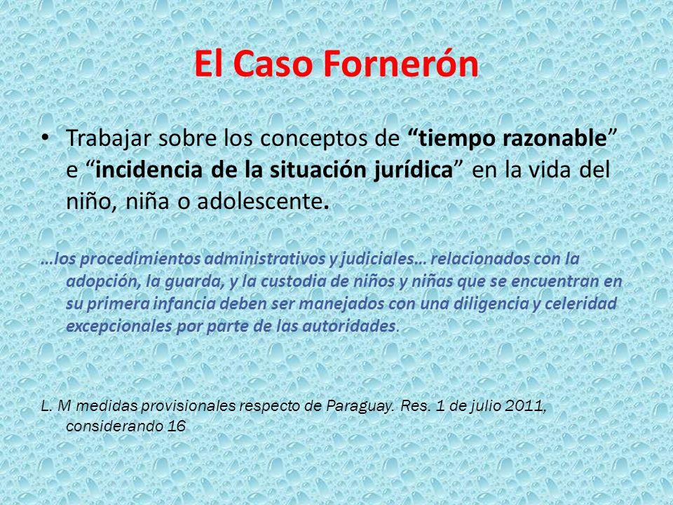 El Caso Fornerón Trabajar sobre los conceptos de tiempo razonable e incidencia de la situación jurídica en la vida del niño, niña o adolescente.