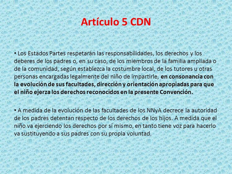 Artículo 5 CDN