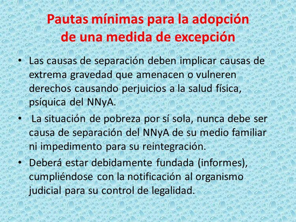 Pautas mínimas para la adopción de una medida de excepción