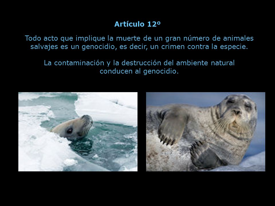 La contaminación y la destrucción del ambiente natural