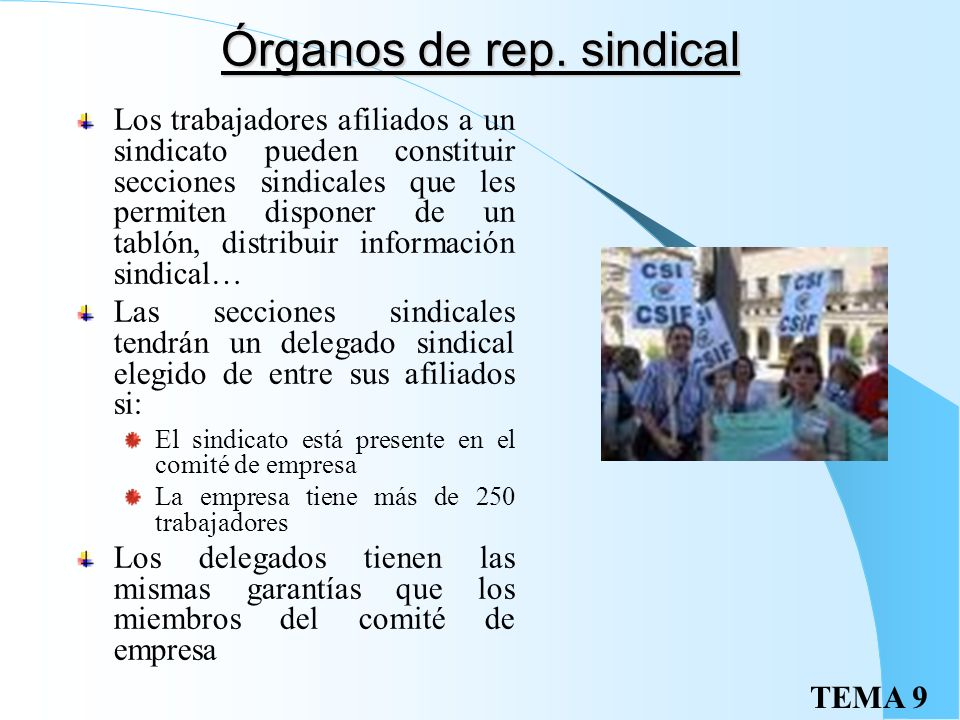 Órganos de rep. sindical