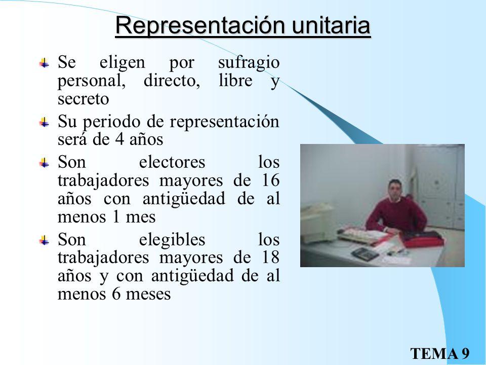 Representación unitaria