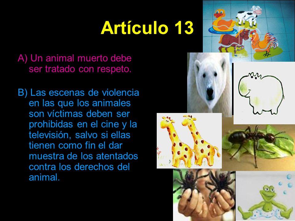 Artículo 13 A) Un animal muerto debe ser tratado con respeto.