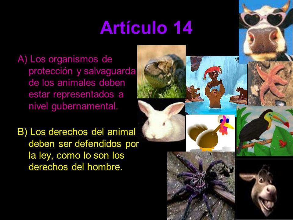 Artículo 14 A) Los organismos de protección y salvaguarda de los animales deben estar representados a nivel gubernamental.