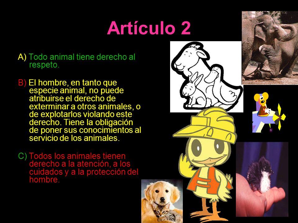Artículo 2 A) Todo animal tiene derecho al respeto.