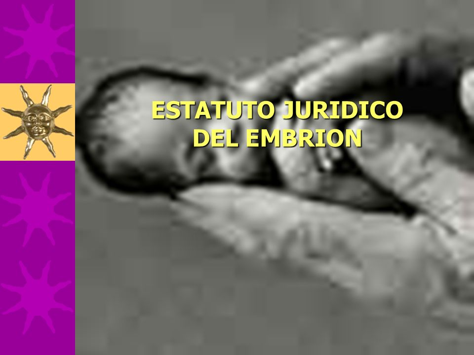 ESTATUTO JURIDICO DEL EMBRION