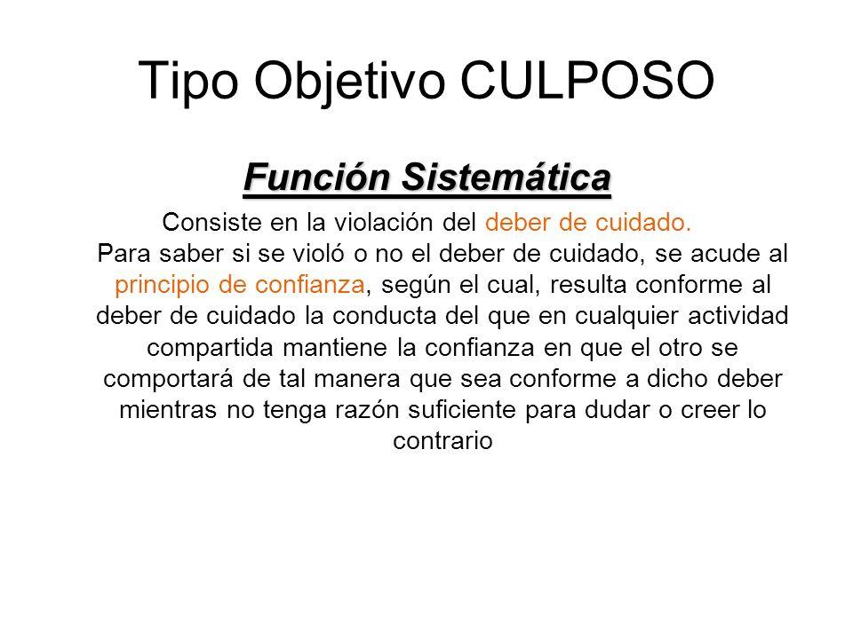 Tipo Objetivo CULPOSO Función Sistemática