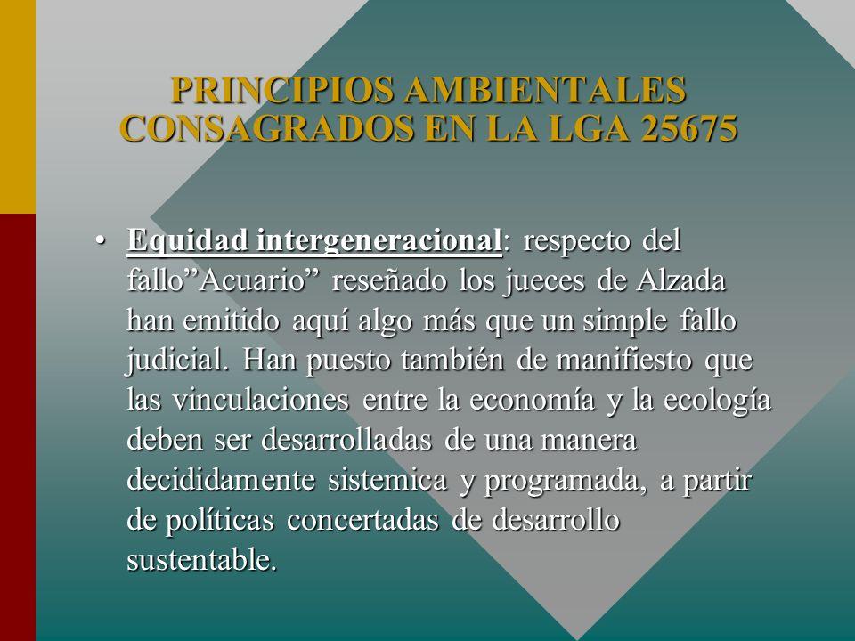 PRINCIPIOS AMBIENTALES CONSAGRADOS EN LA LGA 25675