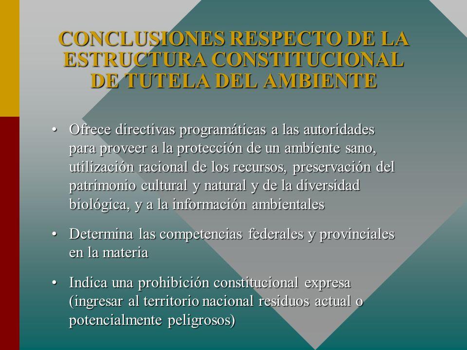 CONCLUSIONES RESPECTO DE LA ESTRUCTURA CONSTITUCIONAL DE TUTELA DEL AMBIENTE