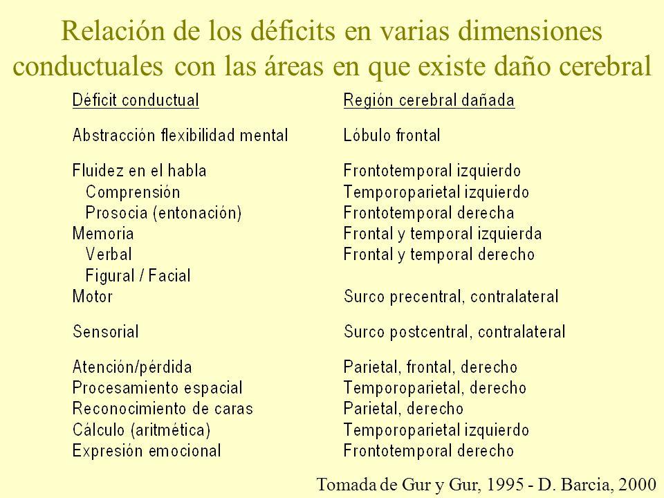 Relación de los déficits en varias dimensiones conductuales con las áreas en que existe daño cerebral