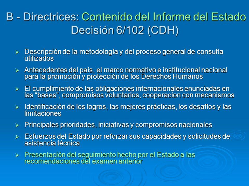 B - Directrices: Contenido del Informe del Estado Decisión 6/102 (CDH)
