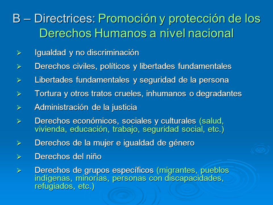 B – Directrices: Promoción y protección de los Derechos Humanos a nivel nacional