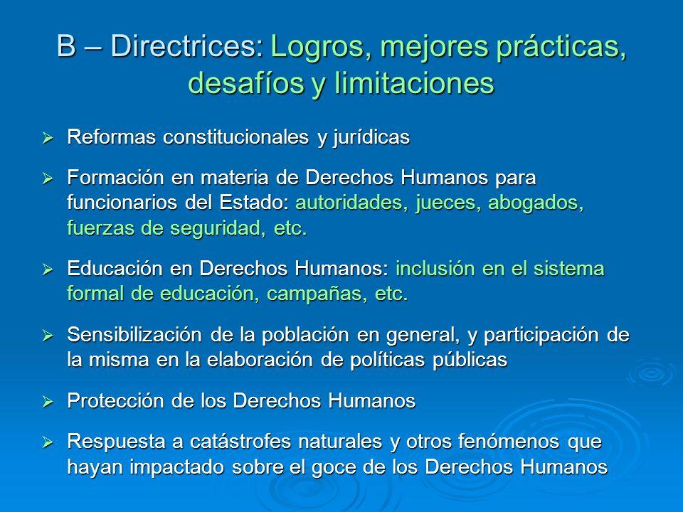 B – Directrices: Logros, mejores prácticas, desafíos y limitaciones