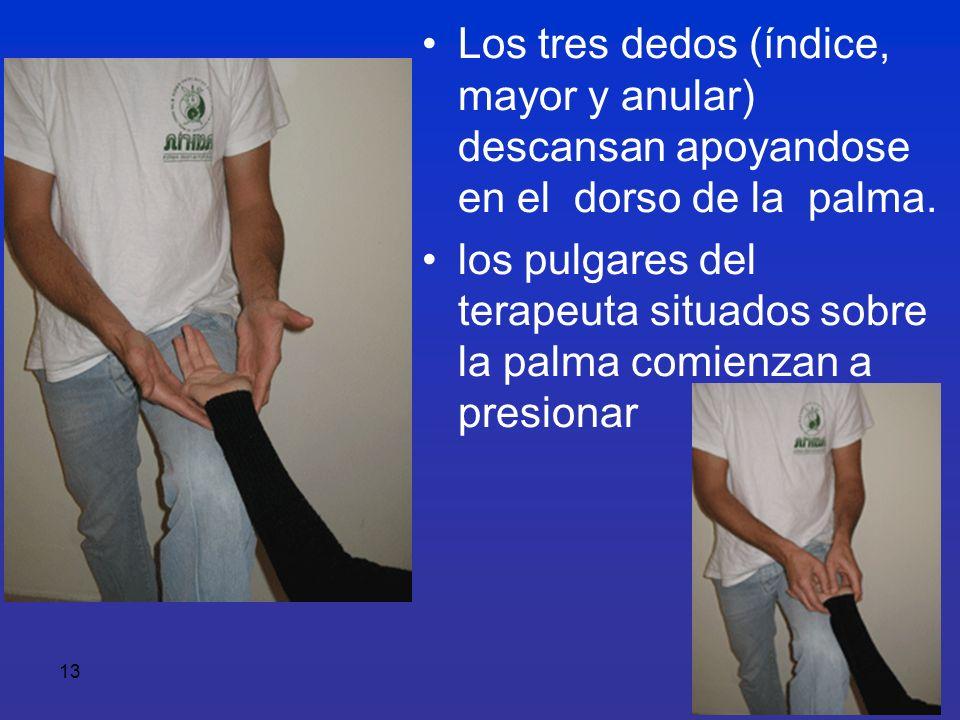 Los tres dedos (índice, mayor y anular) descansan apoyandose en el dorso de la palma.