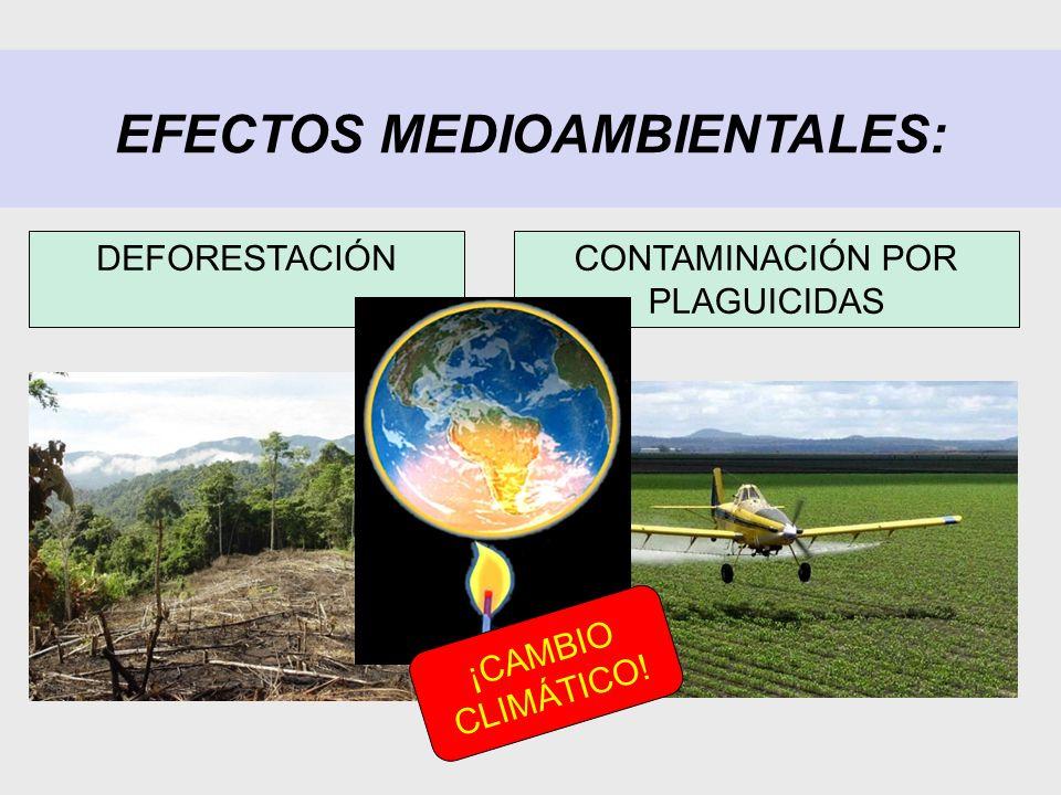 EFECTOS MEDIOAMBIENTALES: