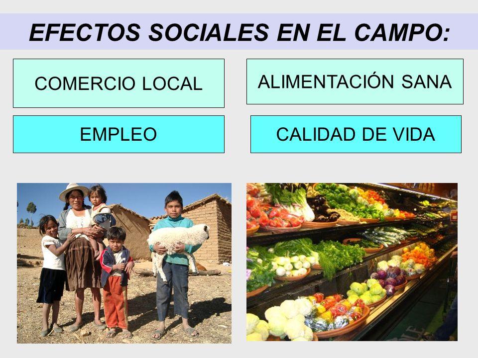 EFECTOS SOCIALES EN EL CAMPO:
