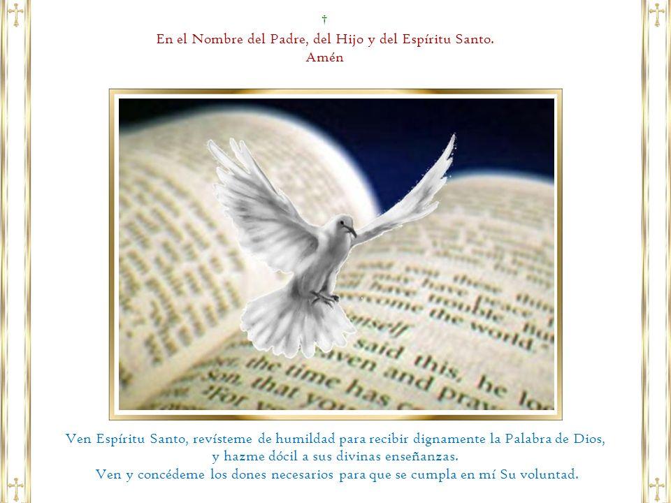 En el Nombre del Padre, del Hijo y del Espíritu Santo. Amén