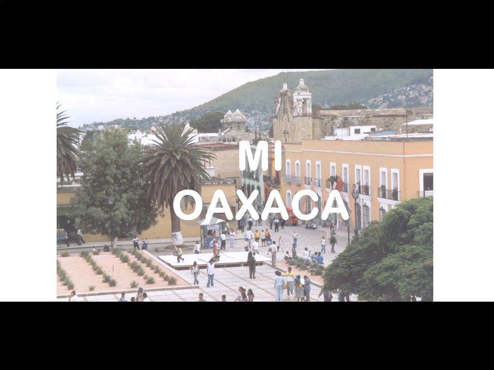 MI OAXACA