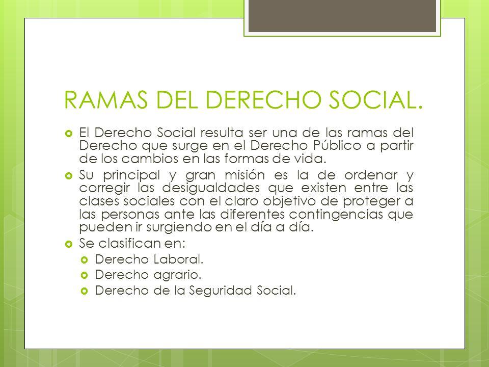 RAMAS DEL DERECHO SOCIAL.