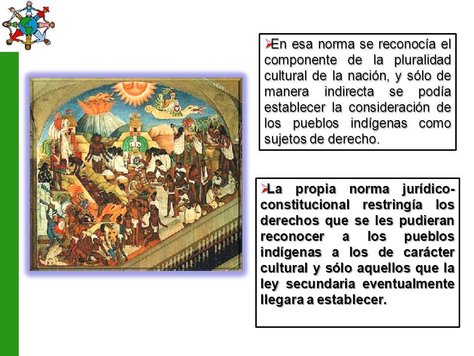 En esa norma se reconocía el componente de la pluralidad cultural de la nación, y sólo de manera indirecta se podía establecer la consideración de los pueblos indígenas como sujetos de derecho.