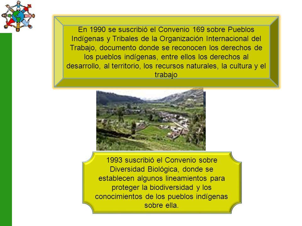 En 1990 se suscribió el Convenio 169 sobre Pueblos Indígenas y Tribales de la Organización Internacional del Trabajo, documento donde se reconocen los derechos de los pueblos indígenas, entre ellos los derechos al desarrollo, al territorio, los recursos naturales, la cultura y el trabajo