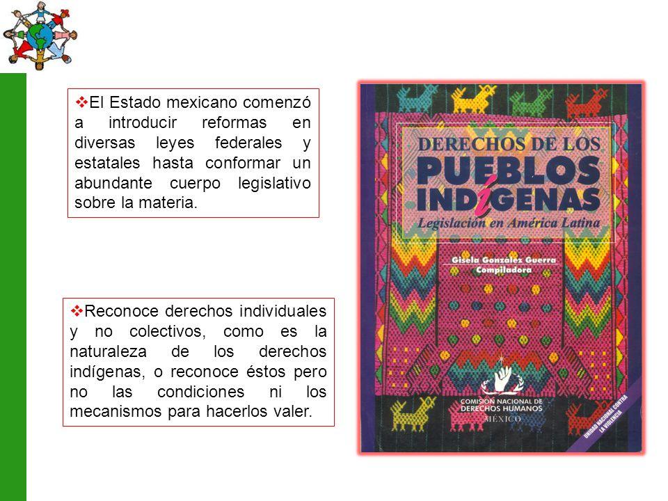 El Estado mexicano comenzó a introducir reformas en diversas leyes federales y estatales hasta conformar un abundante cuerpo legislativo sobre la materia.