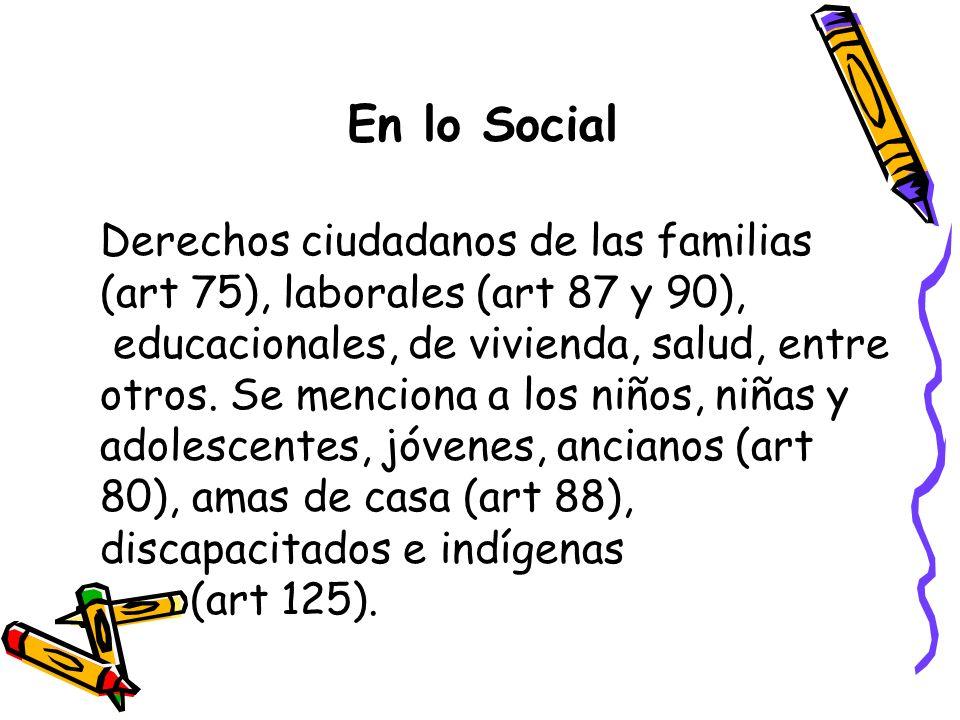 En lo Social Derechos ciudadanos de las familias (art 75), laborales (art 87 y 90),