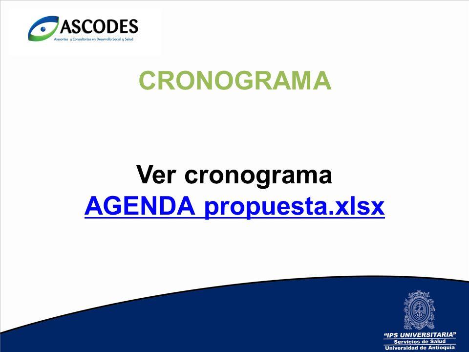 CRONOGRAMA Ver cronograma AGENDA propuesta.xlsx