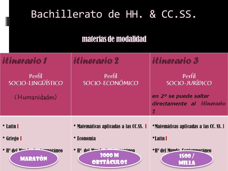 Bachillerato de HH. & CC.SS. materias de modalidad