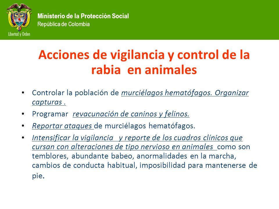 Acciones de vigilancia y control de la rabia en animales