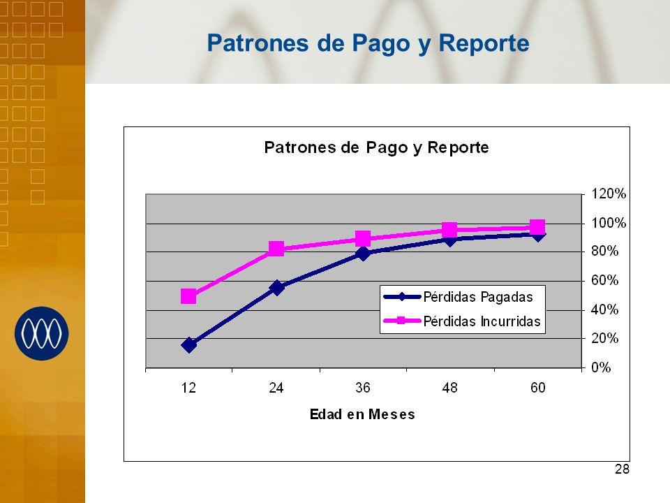 Patrones de Pago y Reporte
