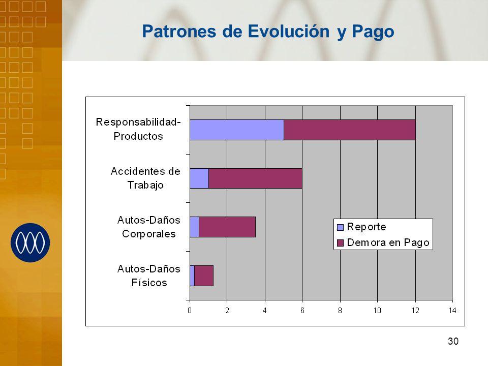 Patrones de Evolución y Pago