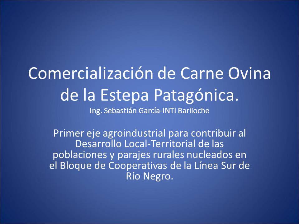 Comercialización de Carne Ovina de la Estepa Patagónica. Ing