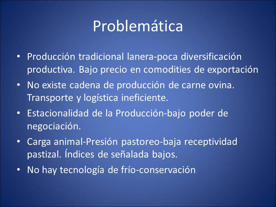 Problemática Producción tradicional lanera-poca diversificación productiva. Bajo precio en comodities de exportación.