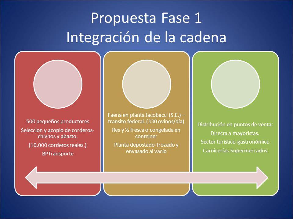 Propuesta Fase 1 Integración de la cadena