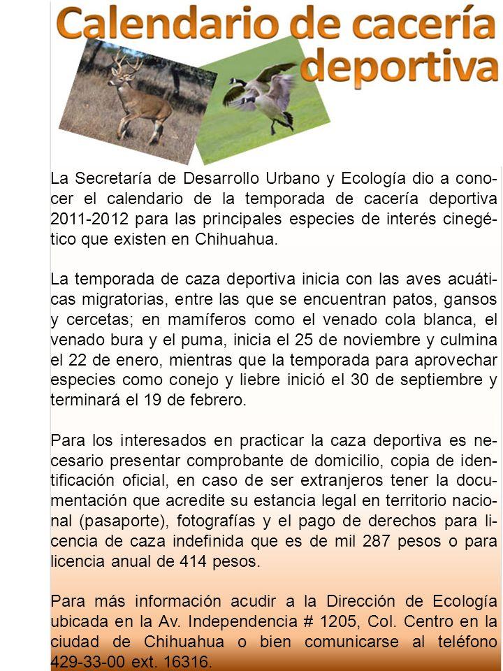 La Secretaría de Desarrollo Urbano y Ecología dio a cono-cer el calendario de la temporada de cacería deportiva 2011-2012 para las principales especies de interés cinegé-tico que existen en Chihuahua.