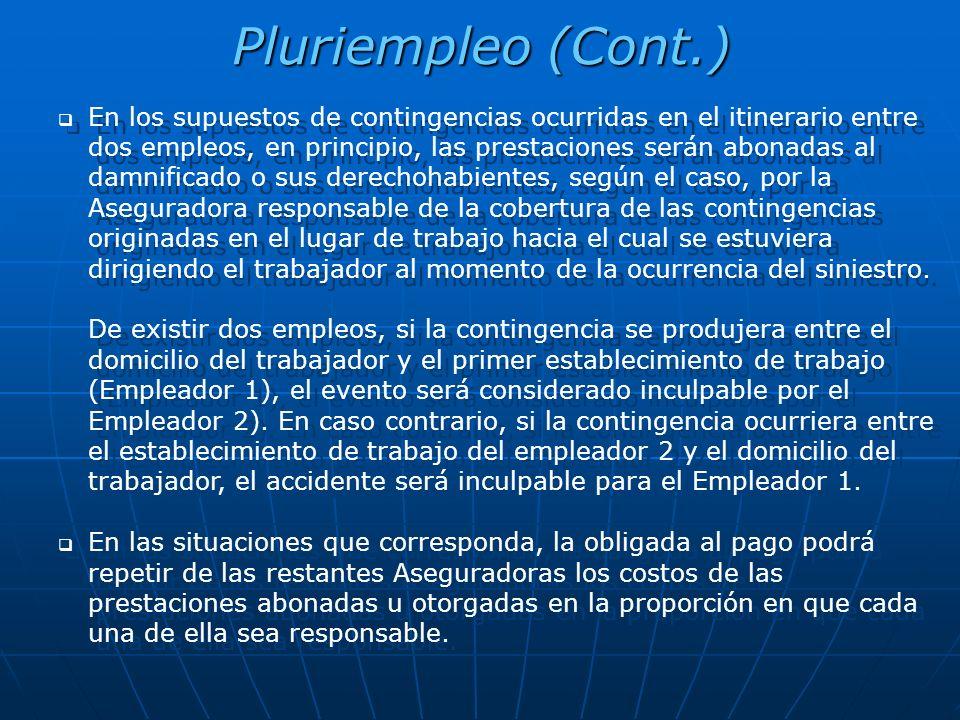 Pluriempleo (Cont.)